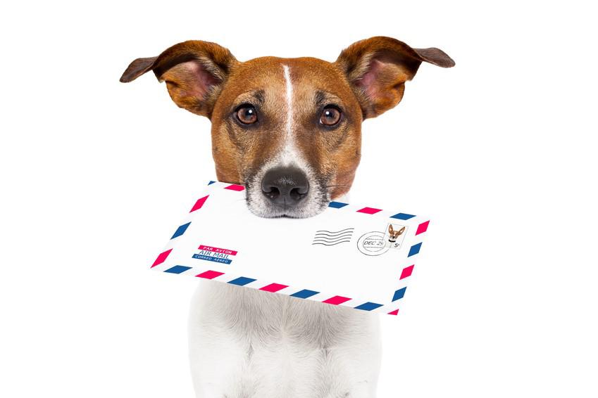 emaili turunduse koolitus
